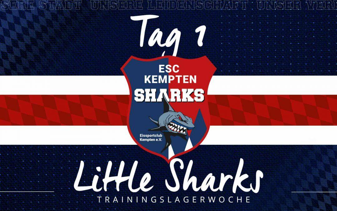 LITTLE SHARKS TRAININGSLAGERWOCHE TAG 1
